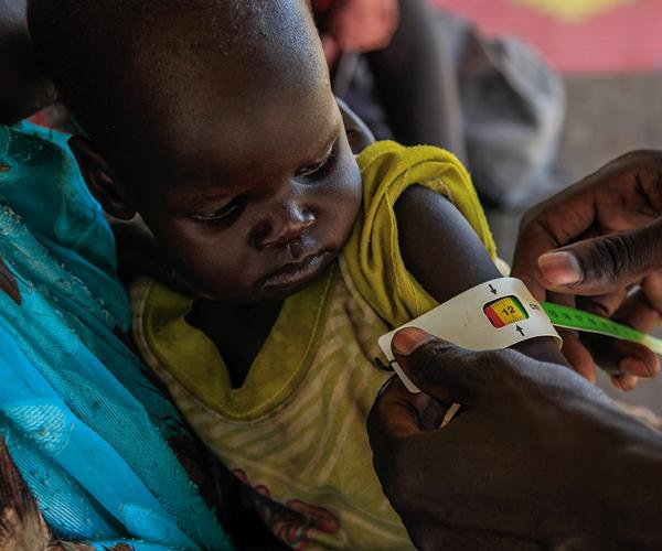acción contra el hambre testamento solidario